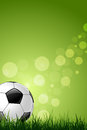 Soccer ball on green grass background and sparkles Stock Photos
