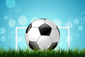 Soccer ball in green grass with gate Royalty Free Stock Image
