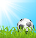 Soccer ball on green grass illustration Stock Images