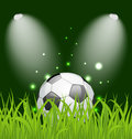 Soccer ball on green grass with light illustration Royalty Free Stock Image