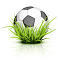 Soccer ball on reflecting grass Stock Photography
