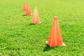 Soccer cone standing on grass. Royalty Free Stock Photo