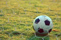 Soccer football in Goal net with green grass field Royalty Free Stock Photo