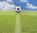Soccer football on green grass Stock Photo