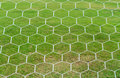 Soccer goal net with green grass background Stock Images