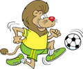 Soccer lion Stock Images
