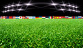 Soccer stadium with flags and lights the Royalty Free Stock Photos