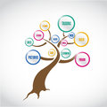 Social media tree illustration design over white Royalty Free Stock Image