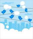 Social network background with blue birds Royalty Free Stock Photos