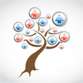 Social network media tree illustration design over a white background Stock Image