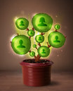 Social network tree coming out of flowerpot shining Royalty Free Stock Images