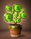Social network tree coming out of flowerpot shining Royalty Free Stock Photos
