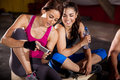 Social networking at a gym cute female friends texting and cross training Stock Photos