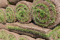 Sod background pallets of for new lawn Royalty Free Stock Images