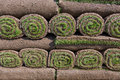 Sod background pallets of for new lawn Royalty Free Stock Image