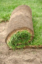 Sod Roll Royalty Free Stock Images
