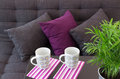 Sofa with cushions and two cups on a table decorated green plant Royalty Free Stock Photos
