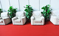 Sofa and green plants Royalty Free Stock Photo