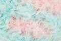 Soft blue and pink feathers from a boa Royalty Free Stock Photo