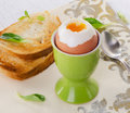 Soft boiled egg Royalty Free Stock Photo
