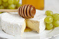 Soft cheese camembert see my other works portfolio Stock Photography