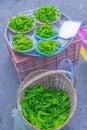 The soft focus of Spirogyra, Chlorophyta, fragmentation, algae, spirogyra food for fish, Thailand herb, local food sold at local m Royalty Free Stock Photo