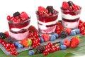Soft fruit dessert Royalty Free Stock Photo