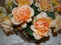 SOFT PEACH COLOURED ROSES Royalty Free Stock Photo