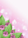 Soft Pink flower and green hosta leaf bokeh background with blank space