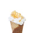 Soft serve ice cream topping caramel isolated on a white background Royalty Free Stock Photo