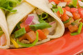 Soft taco closeup Royalty Free Stock Photo