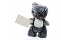Soft toy with a blank form for your text on white background Royalty Free Stock Photo