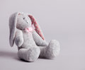 Soft toy. Handmade Stock Photography