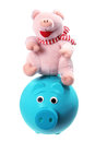 Soft Toy and Piggybank Stock Photo