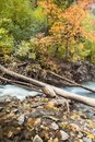 American Fork Canyon fall colors Royalty Free Stock Photo