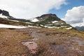 Soggy Snow Melt Creek Royalty Free Stock Photo