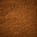 Soil dirt texture with some fine grain in it Stock Image