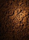 Soil dirt texture with some fine grain in it Stock Photo