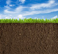 Soil, grass and sky background Royalty Free Stock Photo