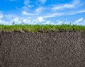 Soil, grass and sky nature background Royalty Free Stock Photo