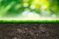Soil and green grass in beautiful background Stock Images