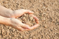 Soil handful female hands humus Stock Photo