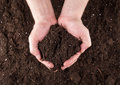 Soil in hands Royalty Free Stock Photo