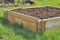 Soil square wooden tray mini vegetable garden Stock Photo