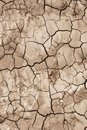 The soil surface is dry and cracked close up Stock Image