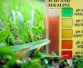 Soil Test Royalty Free Stock Photo