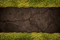 Soil texture with frame of grass Royalty Free Stock Photo