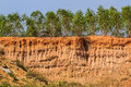 Soil under condition of the erosion as cliff by human Royalty Free Stock Photography