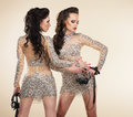 Soiree two elegant shapely women in grey dresses party fashionable girls gray Stock Photos