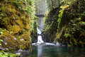 Sol Duc Stock Images
